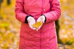 Chica joven que camina en parque del otoño Imagen de archivo libre de regalías
