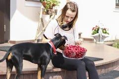 Chica joven que come cerezas con su perro imagen de archivo libre de regalías