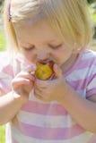 Chica joven que come un ciruelo fotos de archivo libres de regalías
