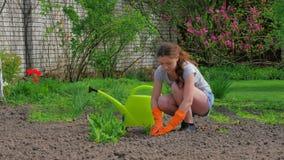 Chica joven que cultiva un huerto en la sol de la primavera metrajes
