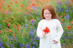 Chica joven que escoge amapolas rojas en un prado en un vestido bonito adentro Imagen de archivo libre de regalías