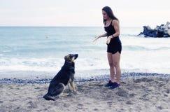 Chica joven que habla con un perro imagenes de archivo