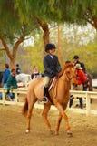 Chica joven que monta un caballo Fotos de archivo