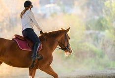 Chica joven que monta un caballo Imagen de archivo