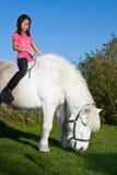 Chica joven que monta un caballo blanco Imágenes de archivo libres de regalías