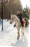 Chica joven que monta un caballo en parque del invierno Imágenes de archivo libres de regalías