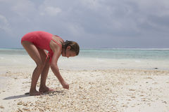 Chica joven que recoge las cáscaras en una playa, cierre del mar para arriba Fotos de archivo
