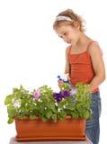 Chica joven que riega una flor Imagen de archivo libre de regalías