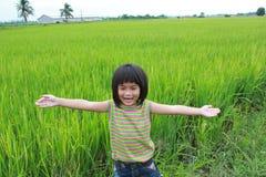 Chica joven que se coloca en el campo del arroz Imagen de archivo libre de regalías