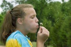 Chica joven que sopla un diente de león Imagenes de archivo