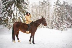 Chica joven y caballo en un bosque del invierno Imagenes de archivo