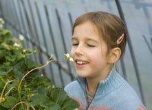 Chica joven y una flor Fotos de archivo libres de regalías