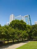 поле chicago дворецкия Стоковые Фото