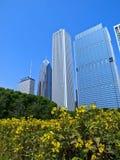 поле chicago дворецкия Стоковая Фотография RF