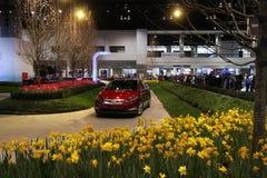 Chicago 2011 auto przedstawienie Obraz Royalty Free
