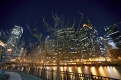 Chicago royaltyfri foto
