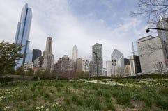chicago anslags- park Fotografering för Bildbyråer
