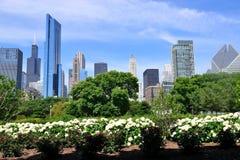chicago anslags- park Royaltyfri Fotografi