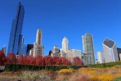 Chicago arkitektur i höst Arkivfoton