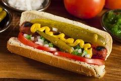 Chicago-Art-Hotdog lizenzfreie stockfotografie