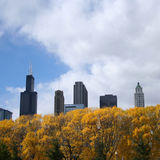 Chicago in autumn Royalty Free Stock Image