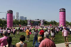 Chicago Avon Walk participants and onlookers Stock Photography