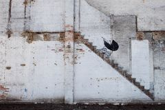 Chicago Banksy Buggy royalty free stock photos