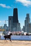Chicago Beach Polo. Chicago, Illinois. - October 1, 2011 Image of polo player playing at North Ave. Beach Stock Photo
