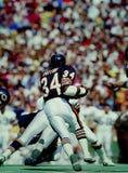 Chicago Bears di Walter Payton fotografie stock libere da diritti