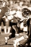 Chicago Bears di Walter Payton fotografia stock libera da diritti