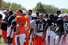 Chicago Bears training camp Stock Image