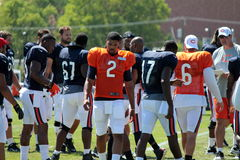 Chicago Bears training camp Stock Images