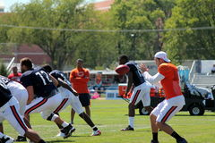 Chicago Bears training camp Stock Photography