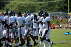 Chicago Bears training camp Stock Photo