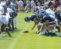Chicago Bears Training Camp. Stock Photos