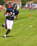 Chicago bears training camp Stock Photos