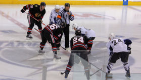 Chicago Black Hawks Vs. Tampa Bay Lightning Stock Image