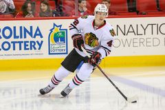 Chicago Blackhawks center Joakim Nordstrom Royalty Free Stock Images