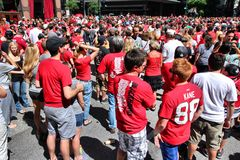 Chicago Blackhawks fans. CHICAGO - JUNE 28: Blackhawks fans celebrate Stanley's Cup win on June 28, 2013 in Chicago. 2 million people celebrated the trophy in stock photo