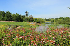 Chicago Botanic Garden Royalty Free Stock Images