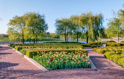 Chicago Botanic Garden. Flowers and trees at the Chicago Botanic Garden stock photography