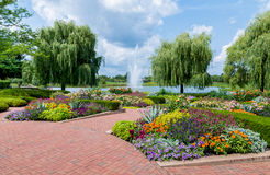 Chicago Botanic Garden. Flowers and trees at the Chicago Botanic Garden royalty free stock photography