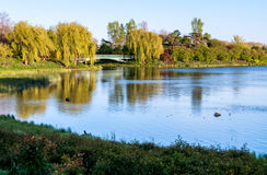 Chicago Botanic Garden. Lake and trees at the Chicago Botanic Garden Stock Photos
