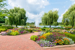 Chicago Botanic Garden, USA. Flowers and trees at the Chicago Botanic Garden, USA stock photography