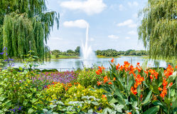 Chicago Botanic Garden, USA. The fountain in the Chicago Botanic Garden, USA stock photos