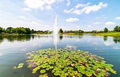 Chicago-botanischer Garten Lizenzfreie Stockfotos