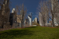 Chicago Buildings. Building Chicago in the end of the winter with a park in the front Royalty Free Stock Images