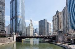 Chicago buildings Royalty Free Stock Photos