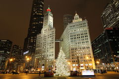 Chicago at Christmas royalty free stock image