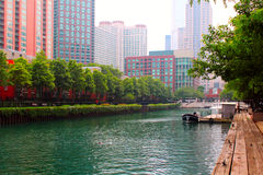 Free Chicago Downtown Stock Photo - 24315490